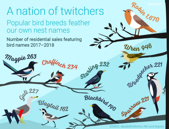 A nation of twitchers