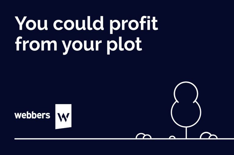 Could you profit from your plot?